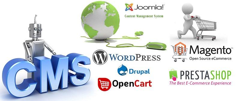 CMS-Based Website Designing & Development Company in Patna