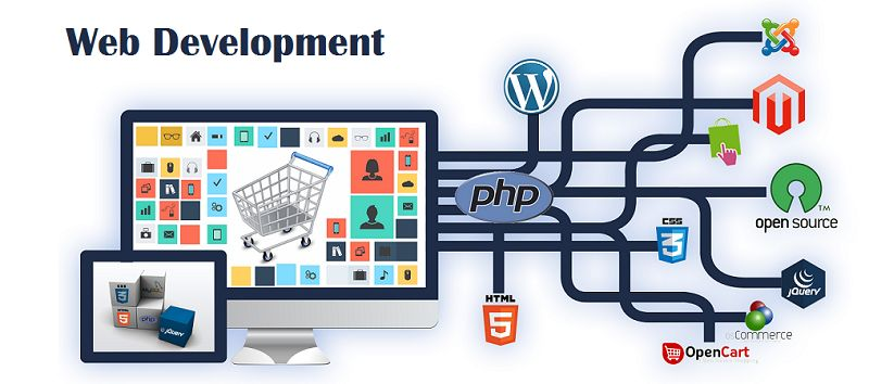 Candent SEO Best Web Development Company